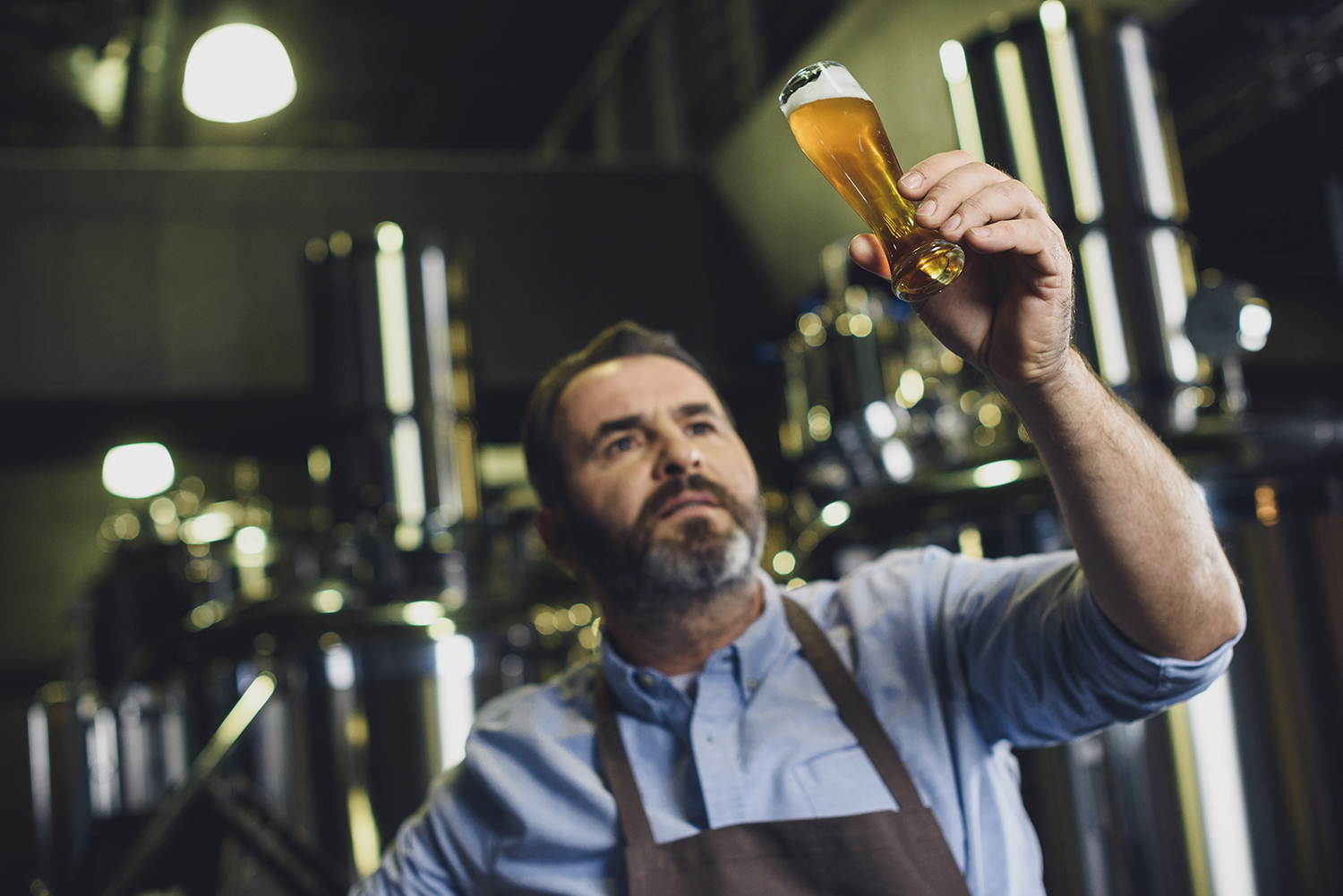 Man inspecting glass of beer at brewery