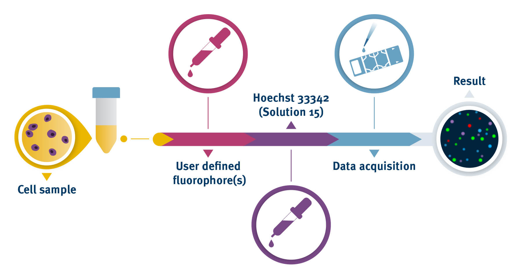 FlexiCyte™ Assay process with the NucleoCounter®