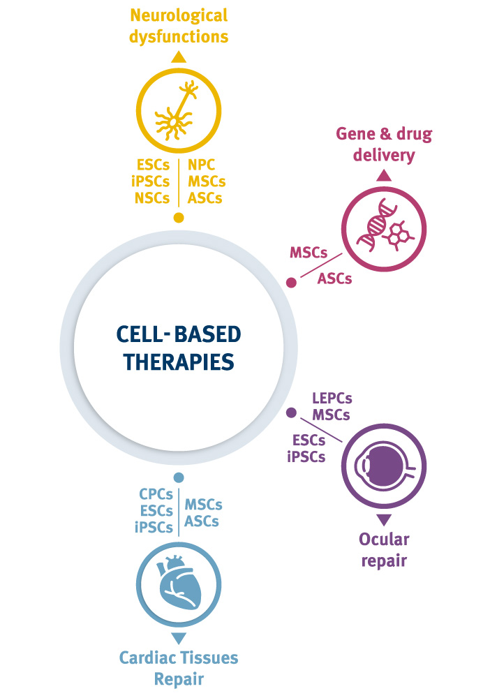 Solutions for Stem Cell Therapy