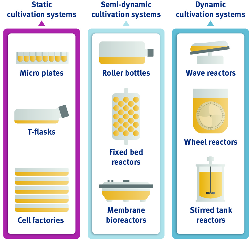 Virus production systems - For Virus Manufacturing & Scaling Up