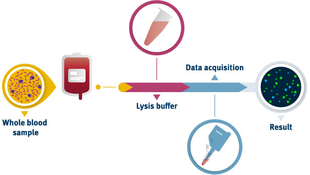 Workflow of counting whole blood cells using the NucleoCounter®